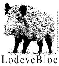 Logo LodeveBloc à l'effigie de Sanglier